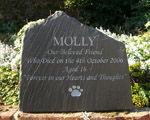 Lovely Dog Memorial for Molly