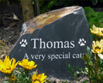 Memorial for a very special cat