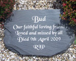 Remembrance for Bud the dog