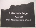 Remembering Shankley aged 10
