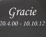 Remembrance for Gracie