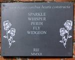 Sparkle Whisper
